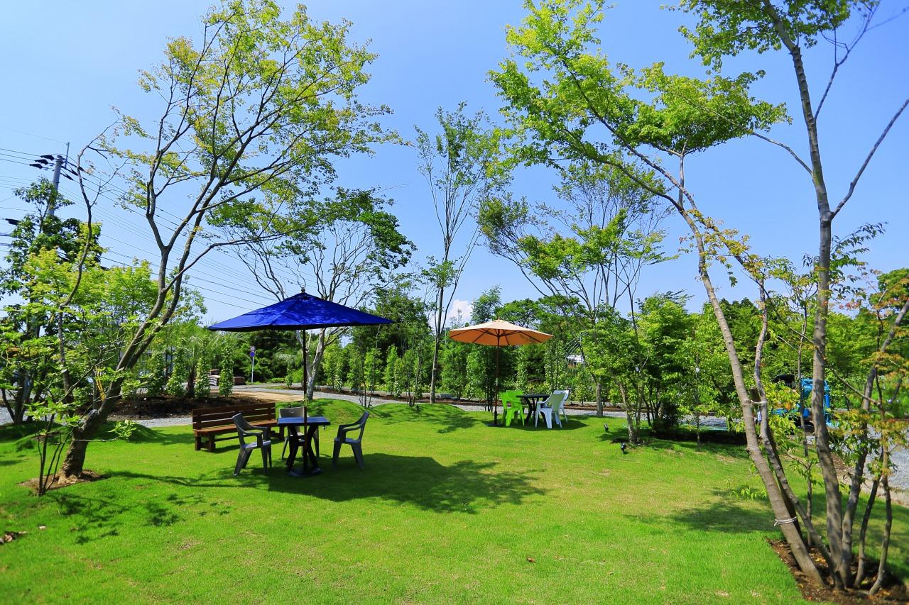 植木生産、庭造りのプロ