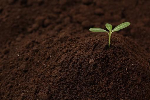 土壌改良資材について