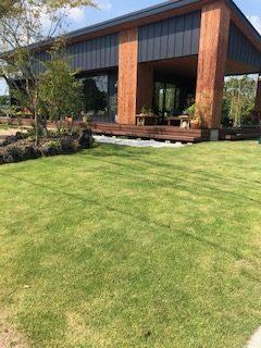 芝生のきれいな育て方