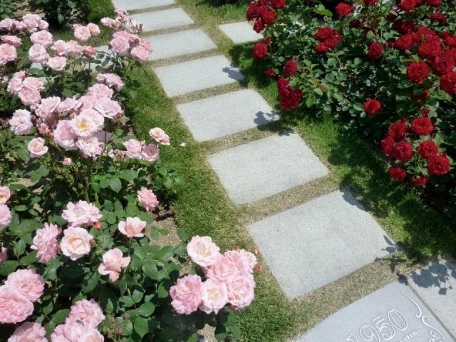 庭に石畳を敷いてみる-その種類・手法やメリット・デメリット