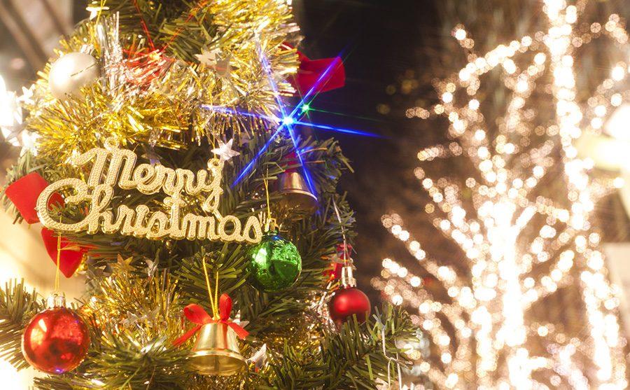 クリスマスツリーは、なんで「もみの木」なの?