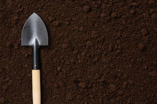 土壌改良材でいい土壌に!