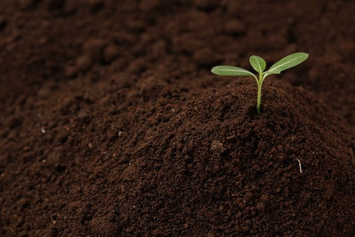 土壌改良資材について | 熊本のエクステリア・外構工事・ガーデニング ...
