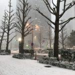冬に行う外構工事の3つのメリット